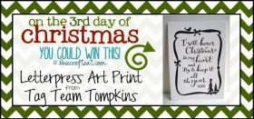 on the 3rd day of christmas {giveaway series}