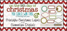 on the 9th day of christmas {giveaway series}