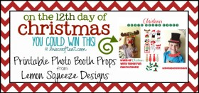 on the 12th day of christmas {giveaway series}