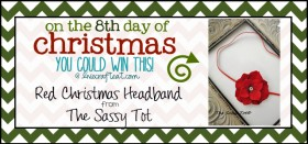 on the 8th day of christmas {giveaway series}