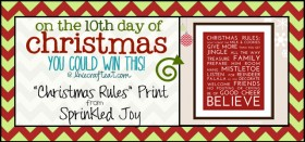 on the 10th day of christmas {giveaway series}