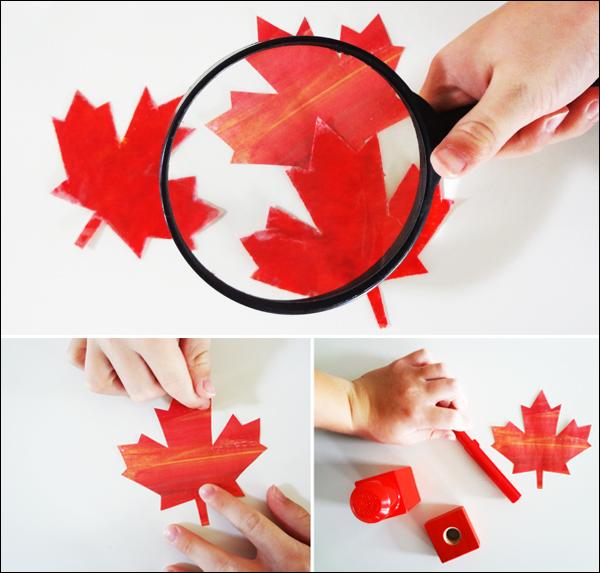 We're going on a leaf hunt! Activity in leaf identification for kids.