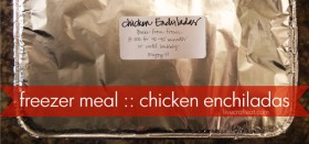 freezer meal :: chicken enchiladas