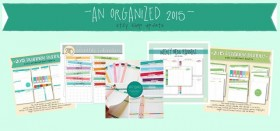 shop update :: an organized 2015!