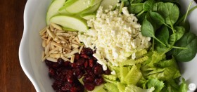 apple cranberry salad with feta