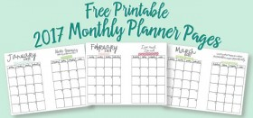 free printable A5 2017 monthly calendars for your planner
