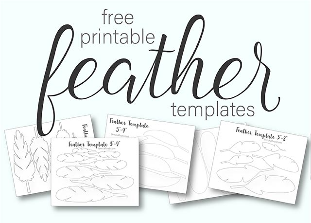photograph regarding Feather Stencil Printable known as Printable Turkey Feather Practices Templates - Totally free Reside