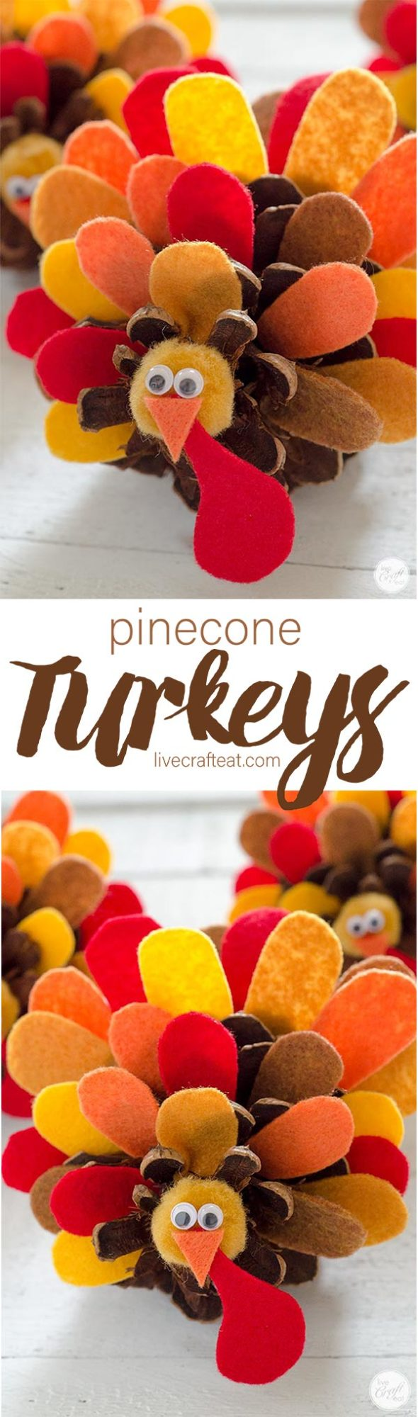 thanksgiving pinecone turkeys :: perfect for decorating or using as place cards at your thanksgiving table!