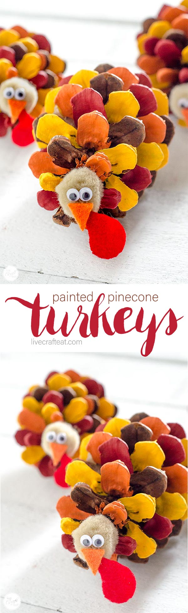 painted pinecone turkeys :: perfect thanksgiving craft for kids, and great as place card holders, or just as cute thanksgiving decorations!