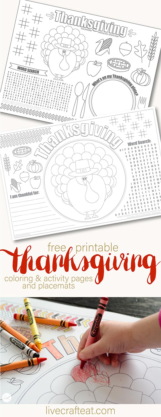 graphic about Printable Thanksgiving Placemat named Printable Thanksgiving Placemats For Youngsters - Totally free Stay