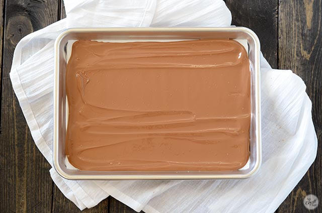 chocolate layer