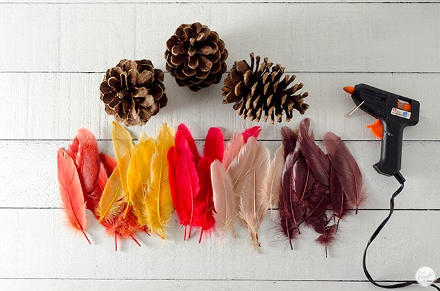 pinecones, faux feathers, hot glue gun